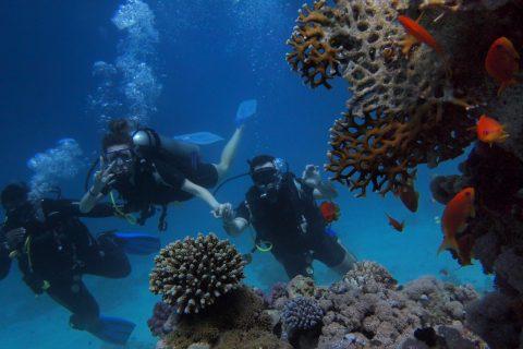 corsi padi subacquea